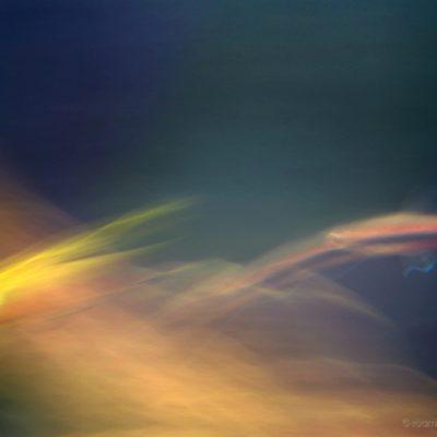 Impressionist fish