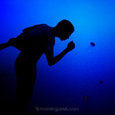 Encounter in blue
